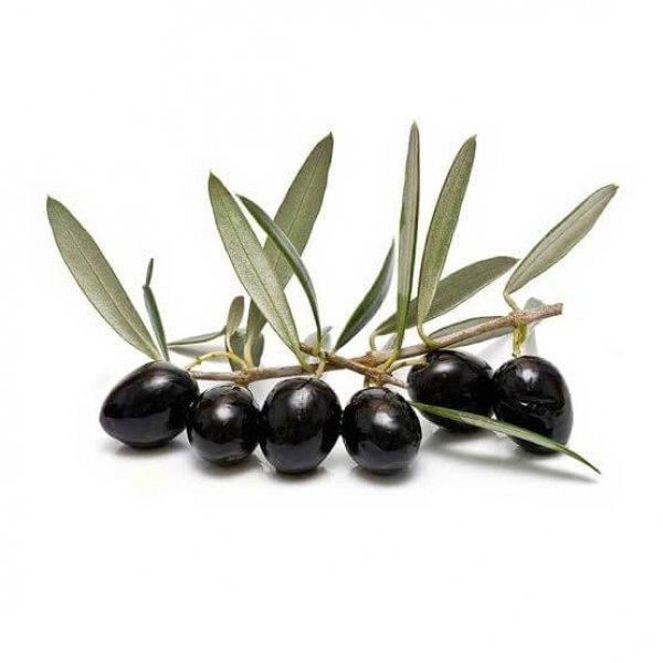 Olive_Leaf Image