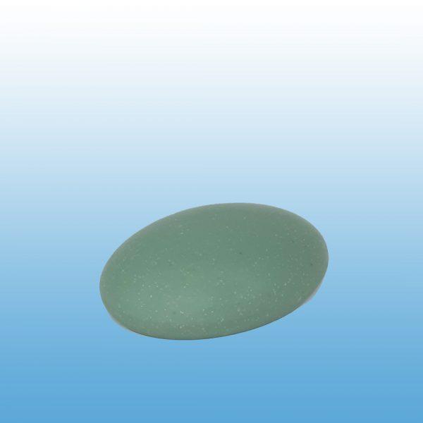 workshop-soap